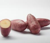 Maison Bayard - Pommes De Terre Cheyenne - 5kg