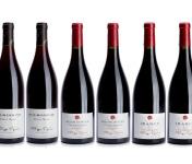 Domaine Tupinier Philippe - Lot de 3 vins Rouges : Bourgogne 2015, Bourgogne Côte d'Auxerre rouge 2016, Irancy AOC 2018 - 6 bouteilles