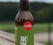 Kura de Bourgogne - Bière Amere Bio Umami 33cl