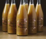 La Ferme des Prun'Elles - Lot de 6 Jus Pomme Mirabelle
