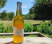 Domaine 5 Autels - Cidre Bio - le Brut - 12x33 cl
