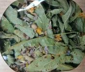 Les Jardins du Mas de Greil - Tilleul-verveine-lavande, Tisane Composée