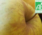 Mon Petit Producteur - Pomme Belchard Bio - 1kg