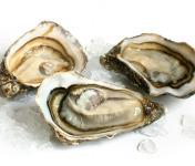 Luximer - Huîtres Creuses - Bourriche De 24