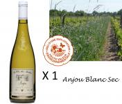 Le Clos des Motèles - Aoc Anjou Blanc Sec 2020: 1 Bouteille