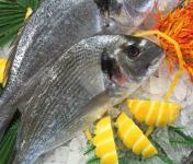 Poissonnerie Le Marlin - Dorade Royale- 400g - Vidée
