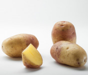 Maison Bayard - Pommes De Terre Carolus - 5kg