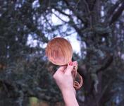 Maison Louve - Cuillère Ronde en olivier - Pièce Unique