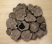 Ferme de Pourcier - Truffe Congelée - Tuber Mélanosporum 50g