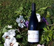 """Domaine Sophie Joigneaux - AOP Chorey-les-Beaune """"les Beaumonts"""" Millésime 2017"""