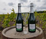 Champagne Deneufchatel - Champagne Deneufchatel Brut Tradition 2 X 75 Cl