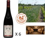 Le Clos des Motèles - Aoc Anjou Rouge 2019 : Cuvée Du Toarcien. 6 Bouteilles
