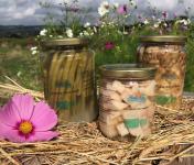 Ferme Sinsac - Panier l'essentiel de la lacto-fermentation