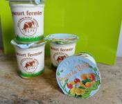Ferme Chambon - Yaourts Au Lait Cru Et Aux Fruits (fruits Du Verger) X12