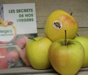 Le Châtaignier - Pommes Golden - 1kg