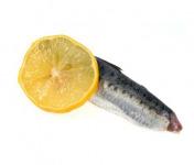 Ma-  poissonnière - Filet De Sardine - Lot De 1 Kg