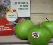Le Châtaignier - Pommes Granny Smith - Colis 14 Kg