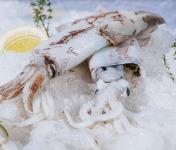 Côté Fish - Mon poisson direct pêcheurs - Calamars 500g