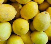 Spiruline des Oliviers - Citrons Jaunes Biologiques De Provence
