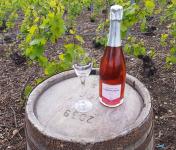 Champagne Deneufchatel - Champagne Deneufchatel Brut Rosé 1 X 75 Cl
