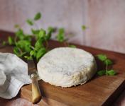 Ferme du caroire - Pavé du Berry crémeux au lait cru de chèvre