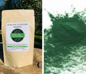 Spiruline des Oliviers - Spiruline En Poudre Cultivée En Provence - 3 Sachets De 100g