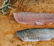 Côté Fish - Mon poisson direct pêcheurs - Filets De Muge 300g