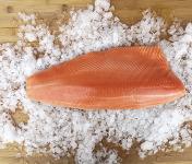Qwehli - Saumon Royal Désareté - Filet 1 À 2 Kg