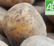 Mon Petit Producteur - Pomme De Terre Bio À Chair Ferme