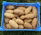 La Ferme Boréale - Pomme De Terre Spunta Calibre 55-75 - 3kg
