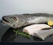 Pêcheries Les Brisants - Ulysse Marée - Dos de Merlu - Peau - Lot de 1kg