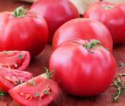 Elissalde Le Potager Basque - 6 plants de tomates variétés anciennes 100% naturels