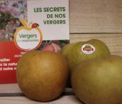 Le Châtaignier - Pommes Reinette Grise Du Canada - Colis 14 Kg