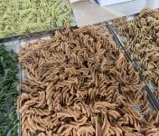 Païs'an Ville® - Lot découverte Pâtes Artisanales Bio Tire-bouchon à la farine de Légumineuses 4x250g