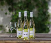 Domaine de l'Ambroisie - Etincelle 2018 3x75 cl AOC Côtes de Toul