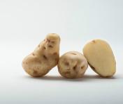 Maison Bayard - Pommes De Terre Institut De Beauvais - 5kg