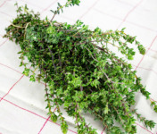 La Boite à Herbes - Thym Frais - Sachet 200g