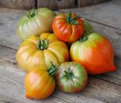 La Boite à Herbes - Lot De Tomate Ancienne - 5kg