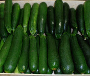 Multiproductions - Cédric Joliveau - Courgette Verte, 3kg