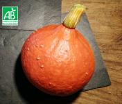 Micro-Ferme de Carcouet - Potimarron Bio - 1.8 à 2 kg