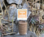 Le Jardin des Antipodes - Biscuits Coeur De Citron Caviar