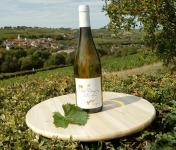 Sancerre Doudeau-Leger - Vent d'Ange - Vin de Pays du Val de Loire Blanc IGP 2019 - 1 Bouteille