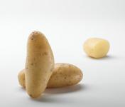 Maison Bayard - Pommes De Terre Juliette Des Sables De La Baie De Somme - 5kg
