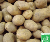 Le Châtaignier - Pommes De Terre Ditta Bio - 10 Kg