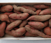 EARL Langevine - Patate Douce 2kg