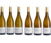 Domaine Tupinier Philippe - Chablis AOC x3 + Côtes d'Auxerre x3 :  Lot de 6 bouteilles Vin Blanc
