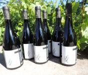 Domaine des Bourrats - Saint Pourçain AOC Rouge Cuvée L.L. - 6 bouteilles