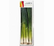 Maison Sales - Végétaux d'Art Culinaire - -6- Mini Poireau - 8 Pièces Minimum