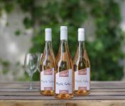 Domaine de l'Ambroisie - Mystic Gris 2018 3x75 Cl AOC Côtes de Toul