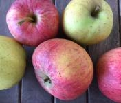 Ferme du Mont de Cuy - Pommes Mélange Rubinette, Cox's Et Chantecler - 1kg